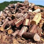 針葉樹を薪に使うコツ?