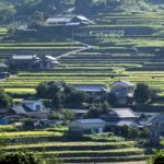 福井県の中山間農業ビジネス